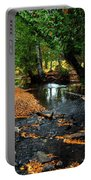 Autumns River Portable Battery Charger