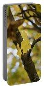 Autumn's Wondrous Colors 1 Portable Battery Charger