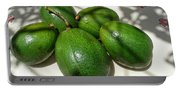 Avacados Portable Battery Charger
