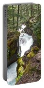 Avalanche Creek In Glacier Np-mt Portable Battery Charger