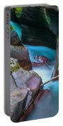 Avalanche Gorge Glacier National Park Painted   Portable Battery Charger