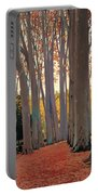 Avenue Of Plain Trees Portable Battery Charger