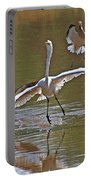 Avocets Chase Off The Egret Portable Battery Charger