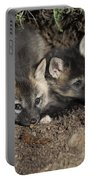 Fox-avoidance Portable Battery Charger