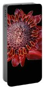 Awapuhi Ko Oko'o - Torch Ginger - Etlingera Elatior - Hawaii Portable Battery Charger