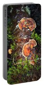 Awe Inspiring Fungi Portable Battery Charger