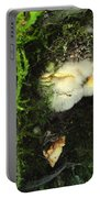 Awe Inspiring Fungi Three Portable Battery Charger