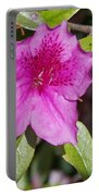 Azalea Portable Battery Charger
