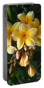 Aztec Gold Plumeria Portable Battery Charger