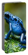 Azure Poison Dart Frog Portable Battery Charger