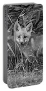 Babes In The Woods 2 - Paint Bw Portable Battery Charger