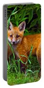 Babes In The Woods Portable Battery Charger