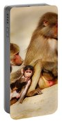Baboon Family In The Desert Portable Battery Charger