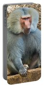 Baboon On A Stump Portable Battery Charger