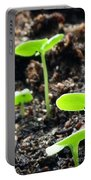 Baby Basil Portable Battery Charger