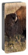 Baby Bison Meets Daddy Portable Battery Charger