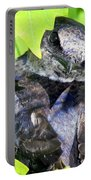 Baby Bluejay Peek Portable Battery Charger by Karen Wiles