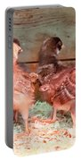 Baby Chicks Under Heat Lamp Art Prints Portable Battery Charger