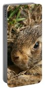 Baby Eastern Cottontail Portable Battery Charger