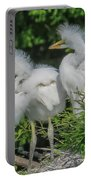 Baby Egrets Portable Battery Charger