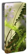 Baby Ferns Unfurling For Jim Portable Battery Charger