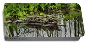 Baby Gators Portable Battery Charger