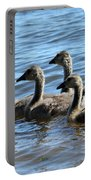 Baby Geese Portable Battery Charger