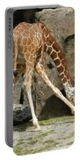 Baby Giraffe 1 Portable Battery Charger