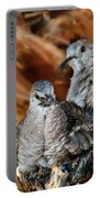 Baby Inca Doves Portable Battery Charger