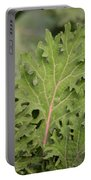 Baby Kale Portable Battery Charger