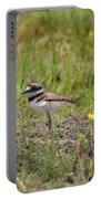 Baby Killdeer Portable Battery Charger