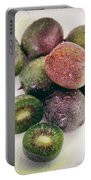 Baby Kiwi Distressed Portable Battery Charger