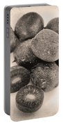 Baby Kiwi Distressed Sepia Portable Battery Charger