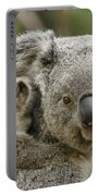 Baby Koala With Mom Portable Battery Charger