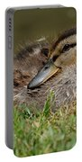 Baby Mallard Portable Battery Charger