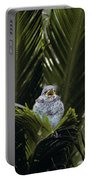 Baby Mockingbird Portable Battery Charger