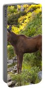 Baby Moose Baxter State Park Portable Battery Charger
