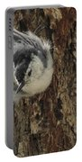 Baby Nuthatch Portable Battery Charger