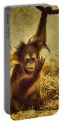 Baby Orangutan At The Denver Zoo Portable Battery Charger