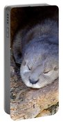 Baby Otter Portable Battery Charger