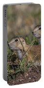 Baby Prairie Dogs Portable Battery Charger