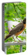 Baby Robin - Ready...just Do What I Do Portable Battery Charger