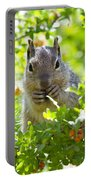 Baby Rock Squirrel  Portable Battery Charger
