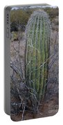 Baby Saguaro Cactus Portable Battery Charger