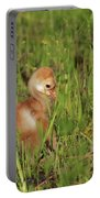 Baby Sandhill Crane Chick Portable Battery Charger