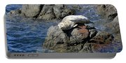 Baby Sea Lion On Rock At San Juan Island Portable Battery Charger