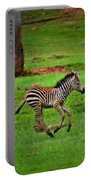 Baby Zebra Running Portable Battery Charger