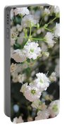 Baby's Breath  Portable Battery Charger