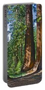 Bachelor And Three Graces In Mariposa Grove In Yosemite National Park-california Portable Battery Charger