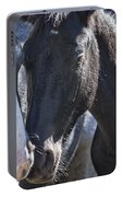 Bachelor Stallions - Pryor Mustangs Portable Battery Charger